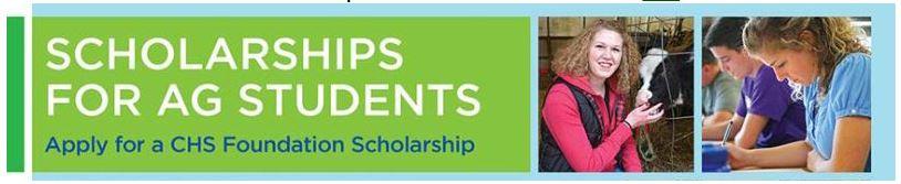 2015-scholarships