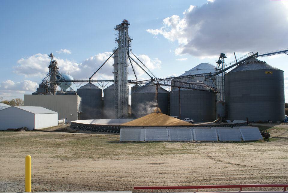 Kasson Grain