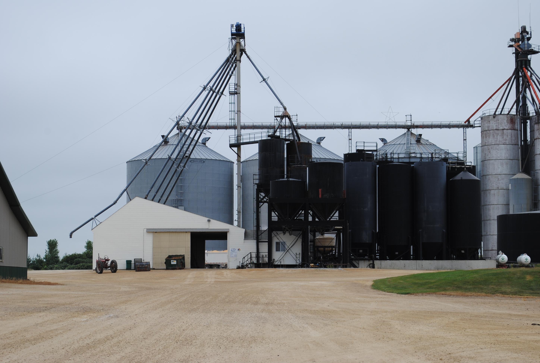 Grand Meadow Grain