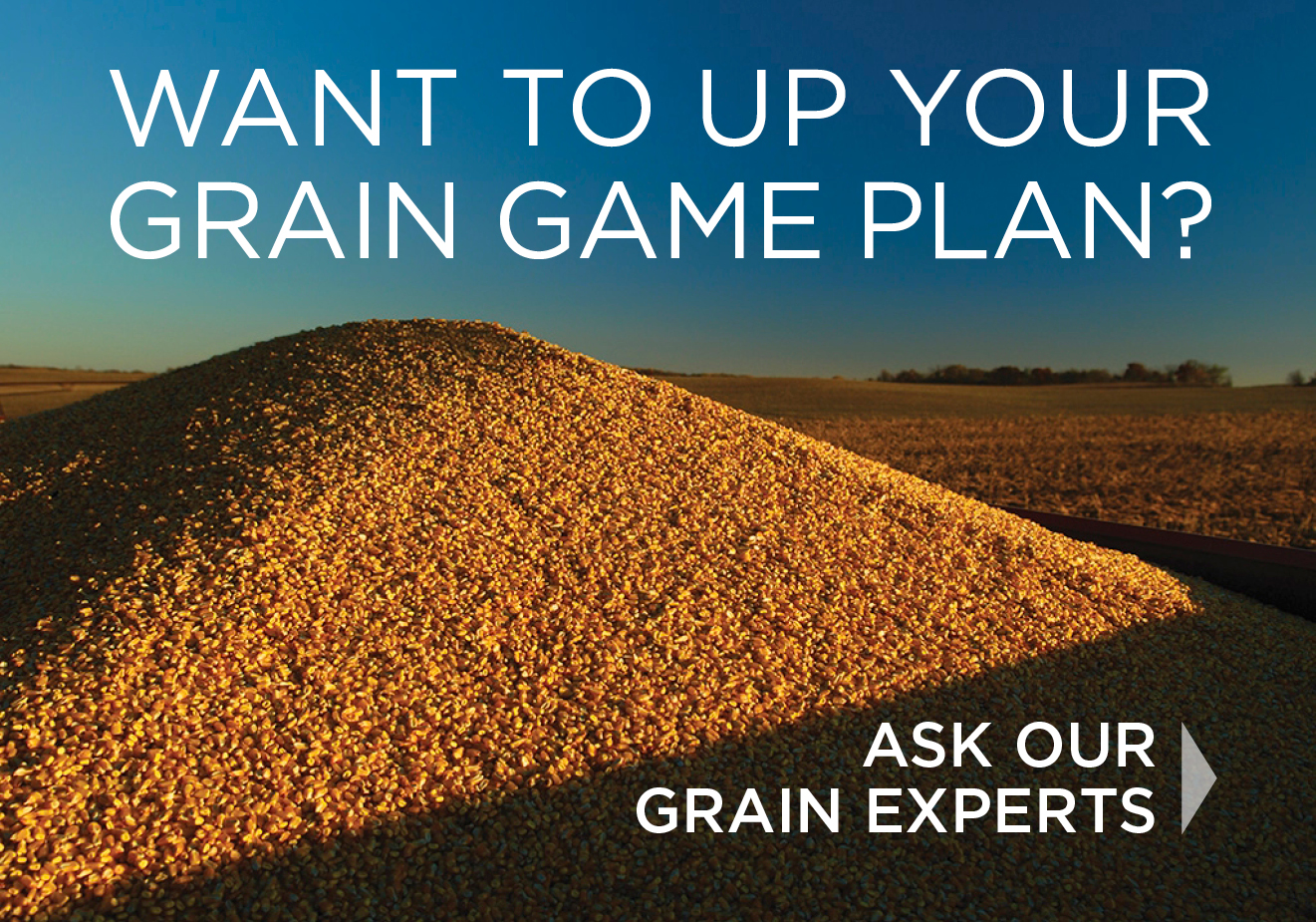 Call us To Up Your Grain Game Plan