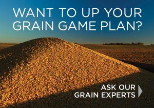 Want to up your Grain Game Plan? Click here to get in touch with one of our grain experts.
